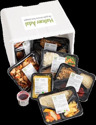 Sådan ser leveringen af dine måltider ud fra Halkær