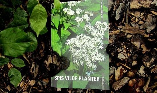 bogen Spis vilde planter - boganmeldelse
